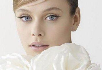 flechas de maquillaje: variante clásica y por la tarde