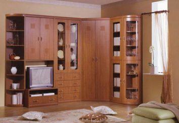 La pared de la sala de estar en un estilo moderno: una función de selección