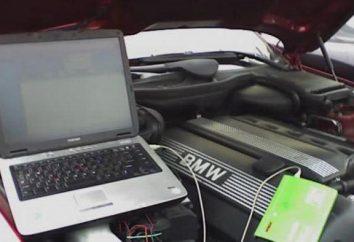 scanner de diagnostic universel pour les voitures. Test de la voiture avec les mains du scanner de diagnostic pour les voitures