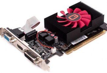 akcelerator graficzny NVidia GeForce GT 640: dane techniczne, opinie i szanse