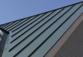 Qual è il miglior materiale per il tetto del tetto. Come scegliere il materiale per il tetto tetto
