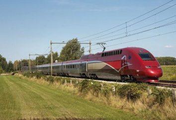 I treni ad alta velocità. La velocità del treno ad alta velocità