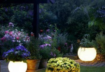 Lampe solaire – décoration de votre jardin
