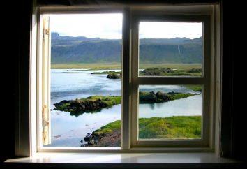 Nous comprenons ce que les meilleures fenêtres: plastique ou bois