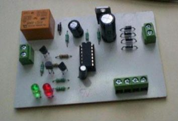 criança elétrica Designer para meninos: tipos, modelos