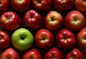 uma maçã por dia – a história do surgimento e matinê roteiro