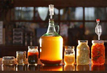 La reazione di fermentazione del glucosio. Tipi, il valore e la fermentazione del prodotto