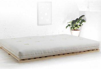 ¿Cómo elegir una base para una cama. ¿Qué es la base de la cama transformable