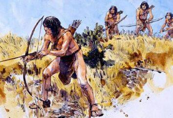 Quel est le Mésolithique? Mésolithique – la base du développement de toute l'humanité