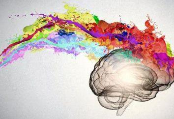 Teste em psicologia – é um método de estudo da personalidade. testes psicológicos com respostas