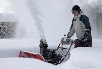 Snowplows electric: recensioni. Ventilatori di neve elettrici Patriot, Huter, Prorab e altri