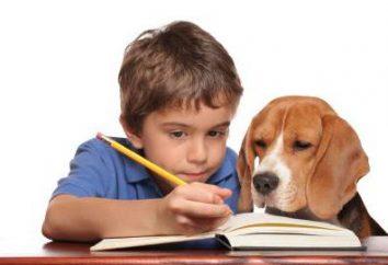 Quels sont les adjectifs et les métaphores, simile, personnification?