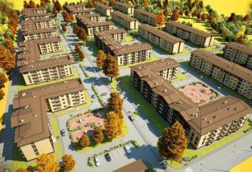 """LCD """"Scheglovsky Manor"""": description du projet et commentaires"""