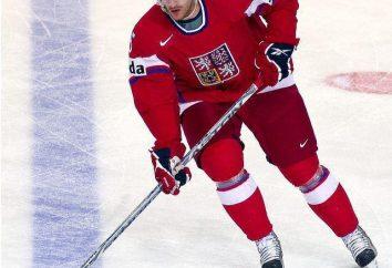 Jan Marek jugador de hockey: logros deportivos y biografía