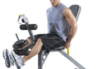 Exercices efficaces dans la salle de gym à la presse