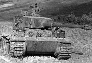 Reich tanque superheavy: E-100