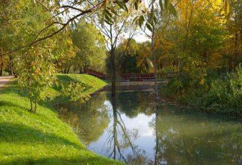 Troparevsky Park – a sud-ovest della capitale
