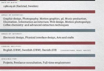 CV, o que é isso em comparação com o currículo.