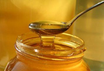 Com que idade pode dar mel para uma criança? Nós aprendemos!