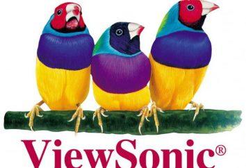 ViewSonic moniteurs LCD: Caractéristiques et commentaires