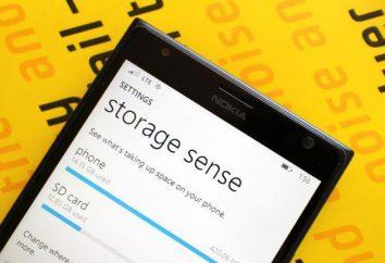 I dettagli su come installare il gioco su Windows Phone