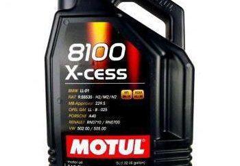 """Motul 5W40 8100 X-cess"": comentários"