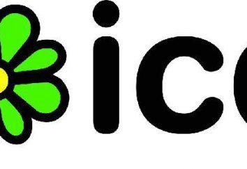 """Duas maneiras, como """"Android"""" set """"ICQ"""""""