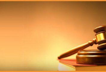 """Artikel 138 des Bürgerlichen Gesetzbuches """"geistiges Eigentum"""". ZGB Teil I, Kapitel 6"""