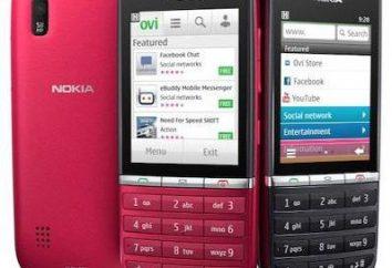Nokia 300: características y comentarios