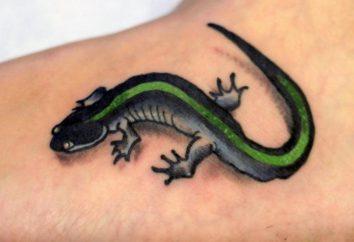 Salamander Tatuaż Dla Odważnych