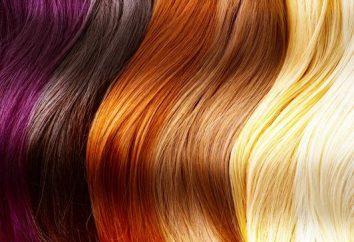 Tavolozza dei colori delle tinture per capelli: caratteristiche della selezione dei toni