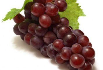 Przetwarzanie winogron jesienią od chorób. Niżby przetworzyć winogron jesienią?