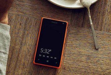 """""""Microsoft Lumiya 532"""": przegląd, opis, funkcje i opinie"""