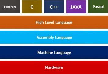 Lista języków programowania. Języki programowania wysokiego i niskiego poziomu