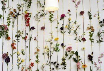 La composition originale de couleurs artificielles telles que l'élément de décoration lumineuse