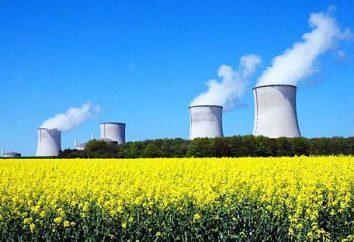 Nucleare (nucleare) di potenza