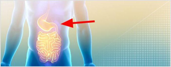 Was sind die Organe der menschliche Verdauungssystem? Beschreibung ...