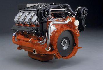 Was ist die Betriebstemperatur des Dieselmotors?