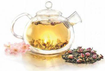 Teapot – préhistoire et types