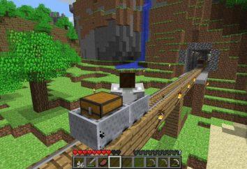 Come tronco rasprivatit ad un altro in Minecraft