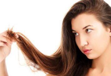 Koszenie wici. Wellness fryzura na końcach dzielonych