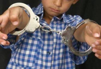 La legge si applica a reati minori. Le sanzioni che si applicano ai minori