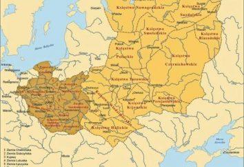 Lyubechesky zjazd książąt: warunków i rezultatów