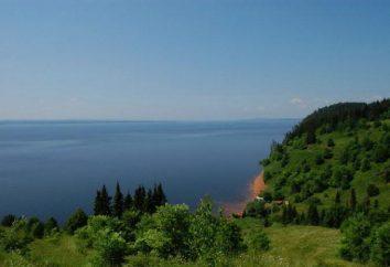 "Nationalpark ""Nechkinsky"": Beschreibung, Merkmale, interessante Fakten, Fauna und Tierwelt"