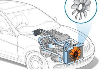 Refroidissement du moteur du ventilateur. Réparation du ventilateur de refroidissement du moteur