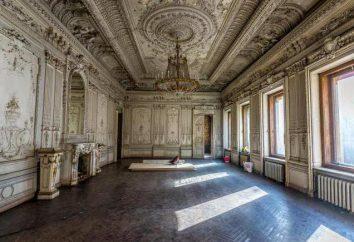 Mansion Brusnitsyn: Dove si trova, la storia e le foto
