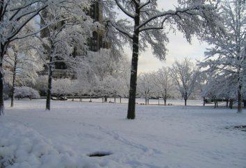 Los signos de invierno en la naturaleza animada e inanimada
