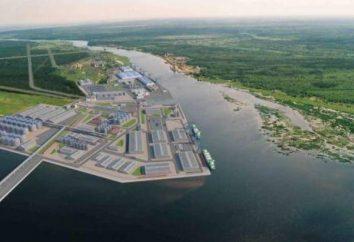 Baltic LNG: Konstruktion und Bau