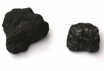 Quels minéraux sont formés à partir de plantes anciennes? Les principaux minéraux