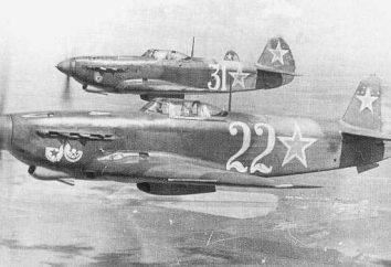 aerei russi della seconda guerra mondiale. Il primo aereo russo